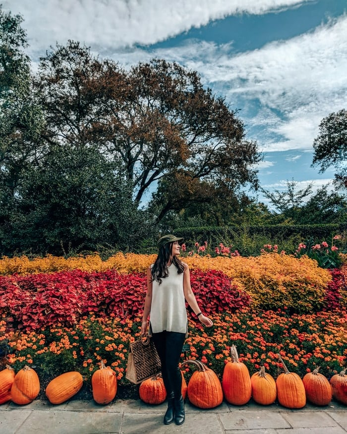 8 THINGS YOU'LL FIND AT THE DALLAS ARBORETUM