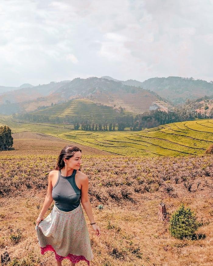 Rwanda tea plantation