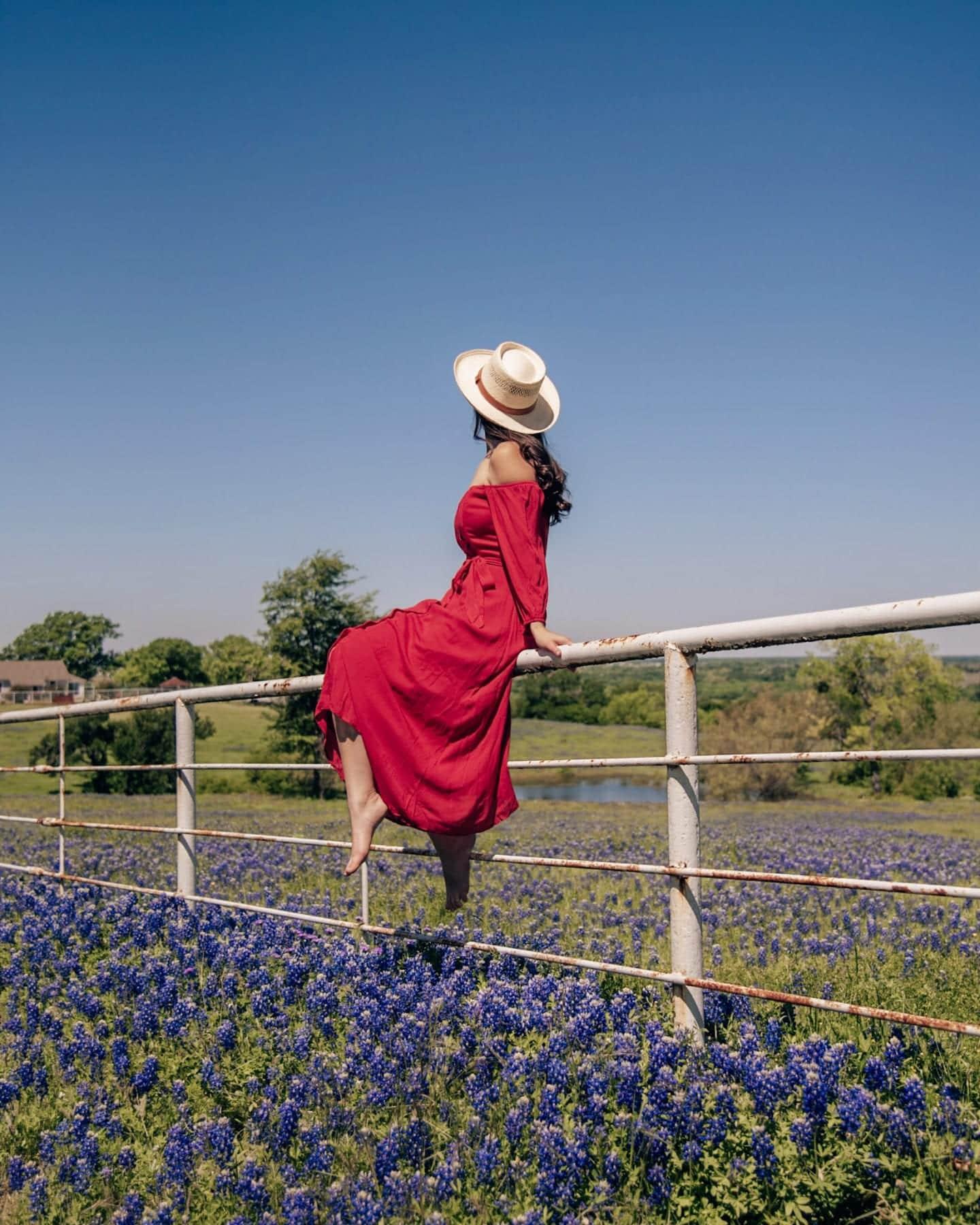 girl on fence in bluebonnets