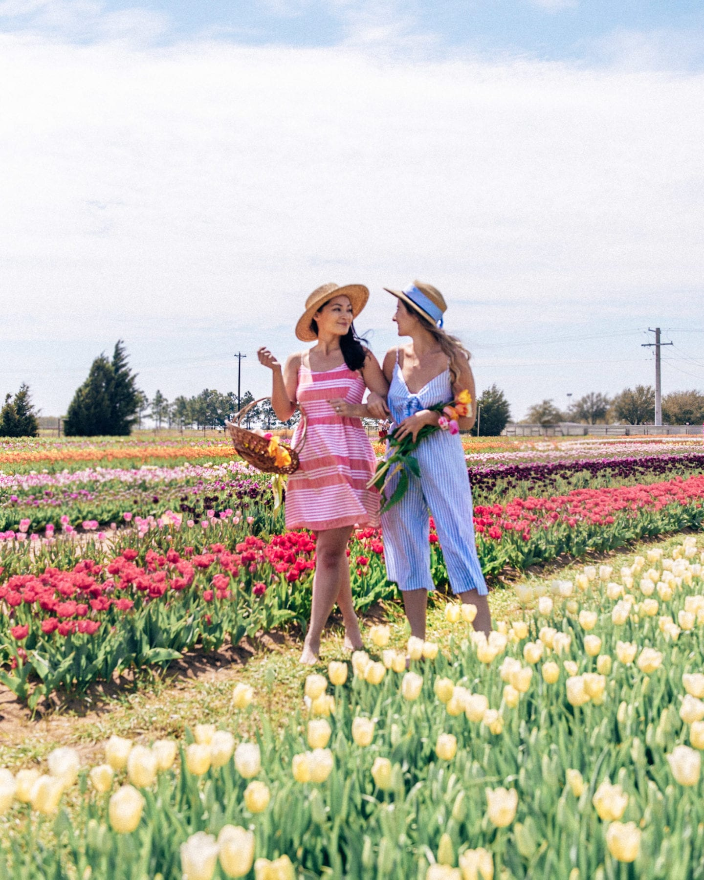 girls walking along tulips