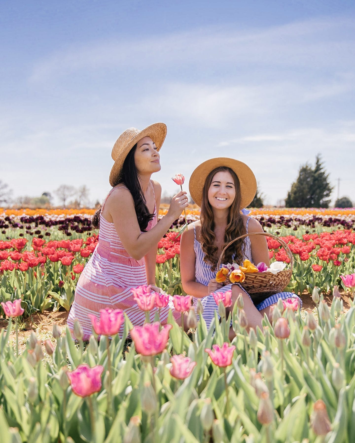 two girls in tulip fields