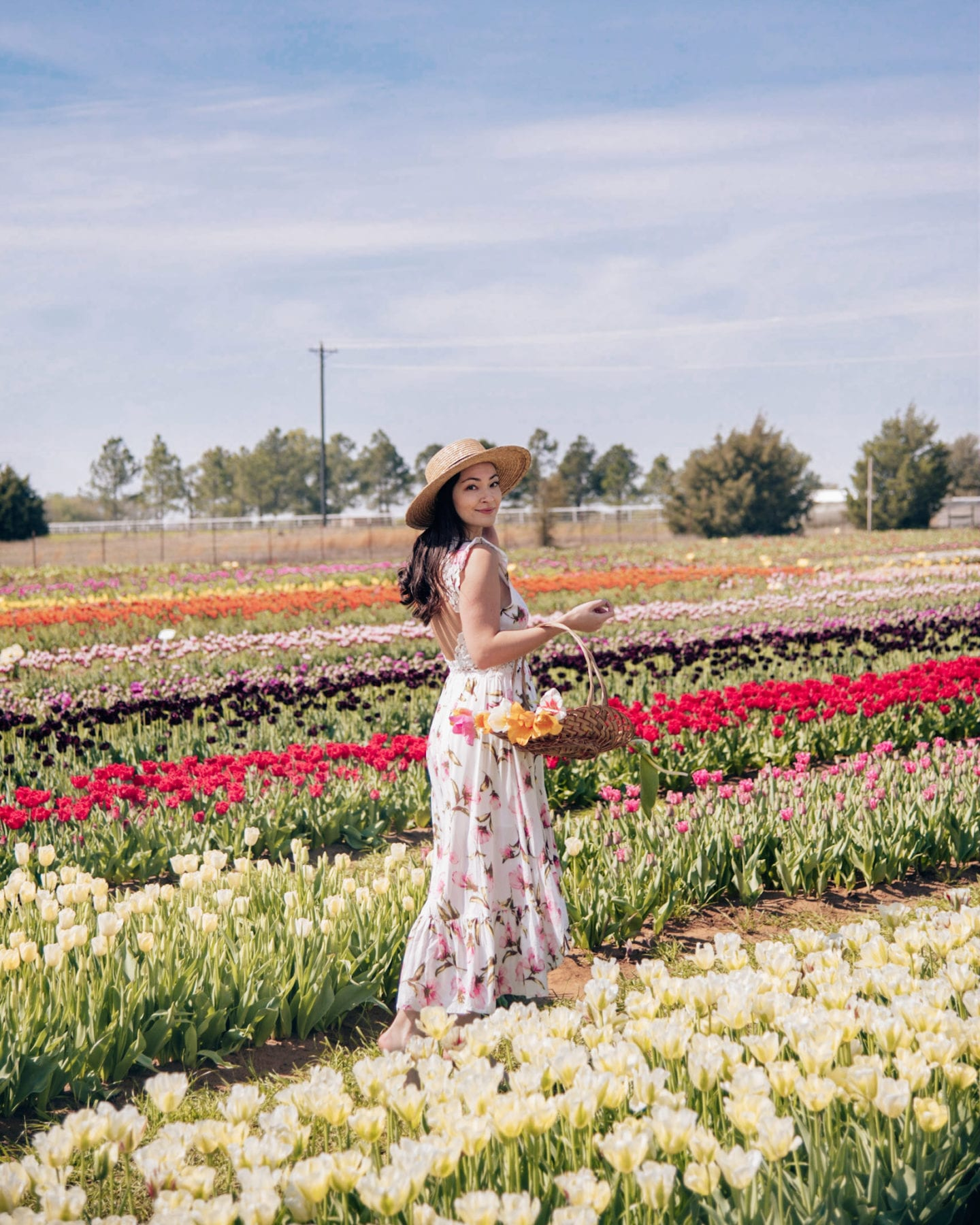 9 Things You'll Find at Texas Tulips in Pilot Point
