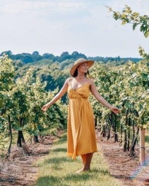 A Breathtaking Vineyard in Tyler, TX