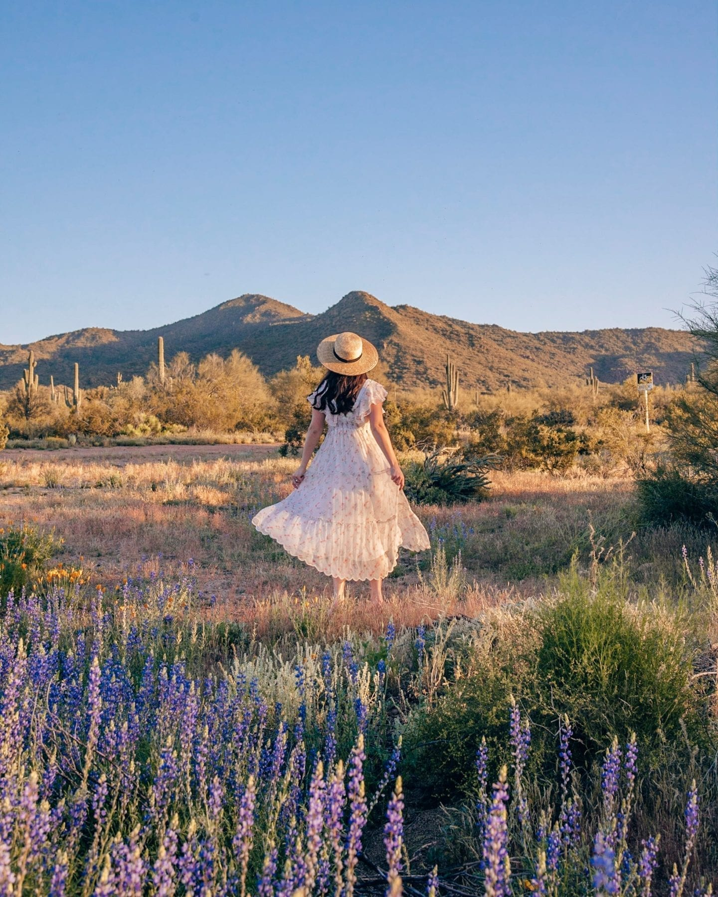 girl with bluebonnets and mountain views
